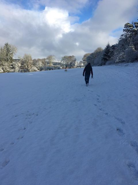 A snow-covered Lochgilphead golf course and Blarbuie on Wednesday January 30 - with Max the lab doing circuits. Photo by Christine Fletcher