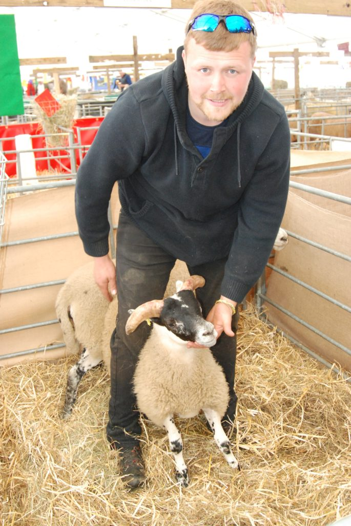 Kintyre's Greig Gillespie was showing blackface sheep at the show. 06_a26RHS27_CrosshillBF