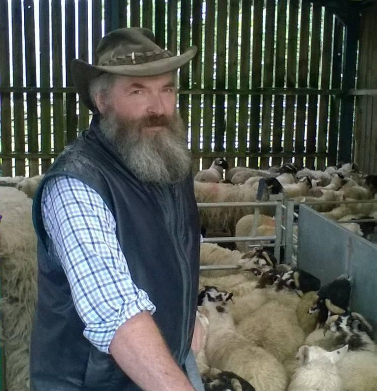 'Shameful' dog owners slammed after latest sheep horror