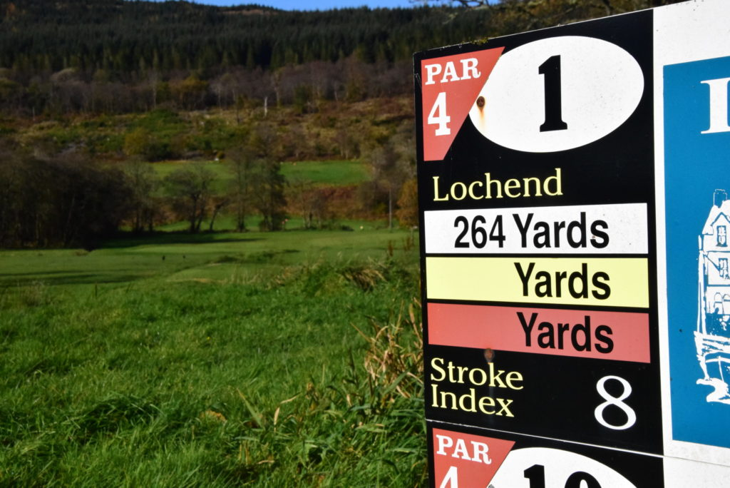 Midweek joy for golfer David
