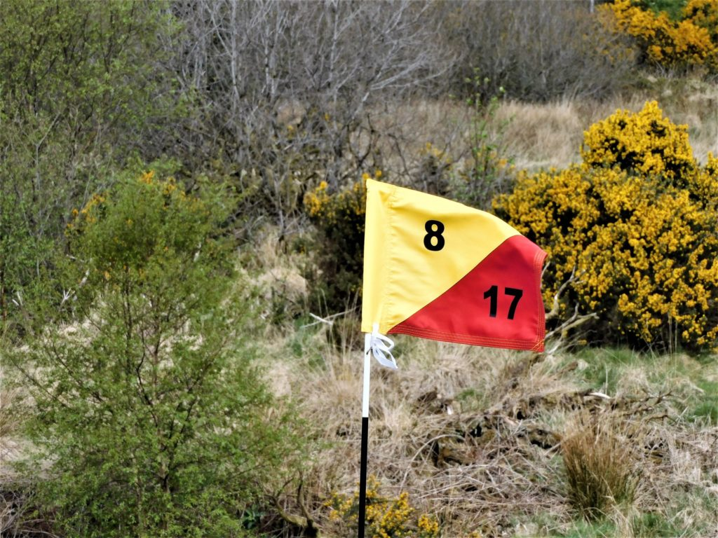 Ladies Centenary Stableford at Lochgilphead
