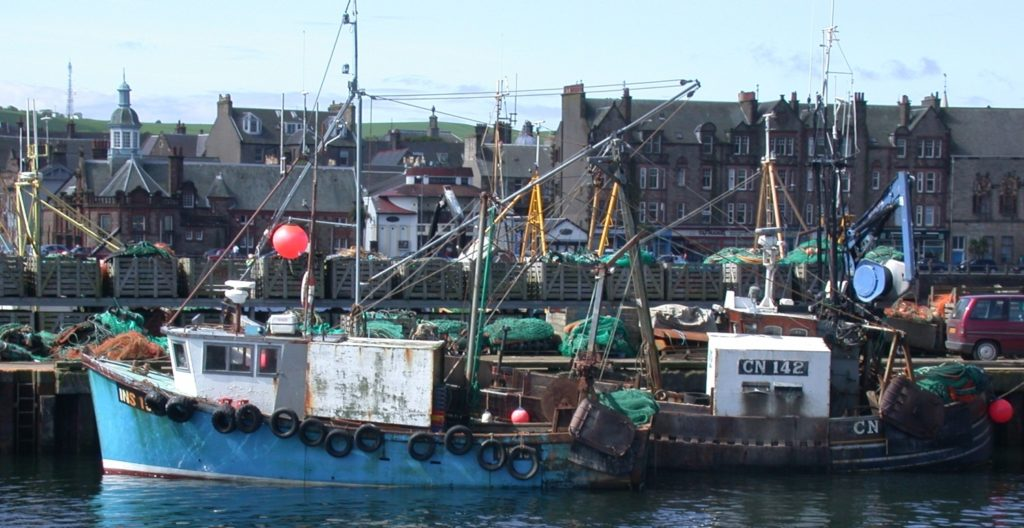 Fishing boat owners must act to export catch