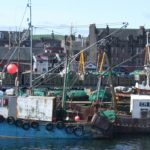 Campbeltown fishing boats.
