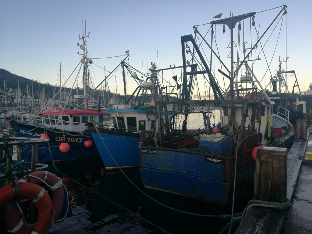 Argyll fishing hit hard by pandemic and Brexit