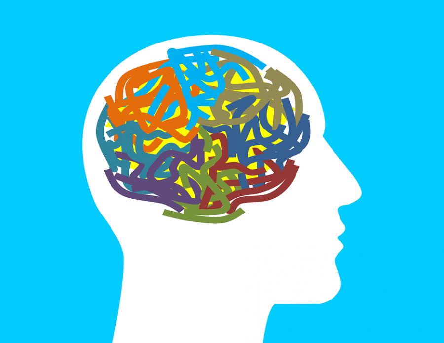 Science Matters – mental illness untangled?
