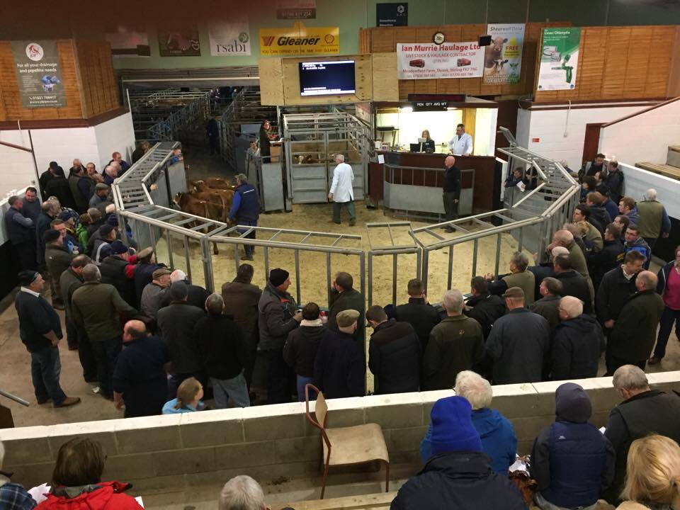 Combined Dalmally and Oban sale proves popular