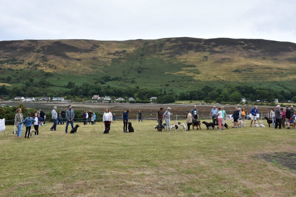 A large field of canine entries took part in the dog competition during the afternoon.