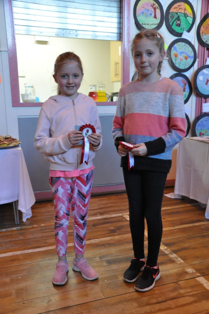 Olivia and Ava McNeice took first prize for their garden in a tray in the children's section.