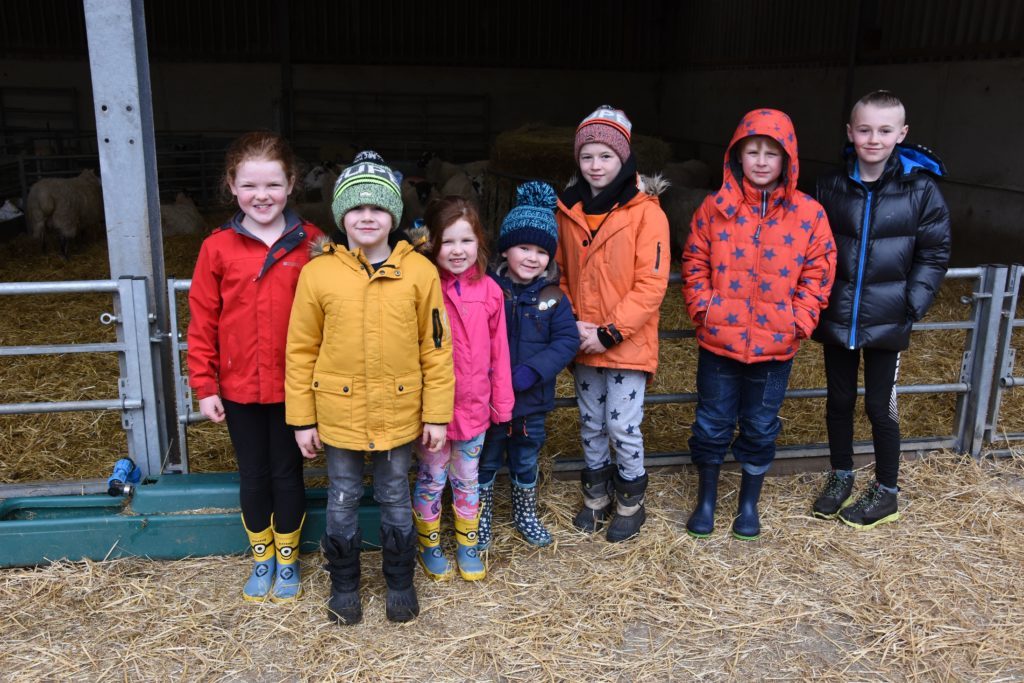 We are here to see the babies, a group of children pose for a photo before returning to look at the animals.