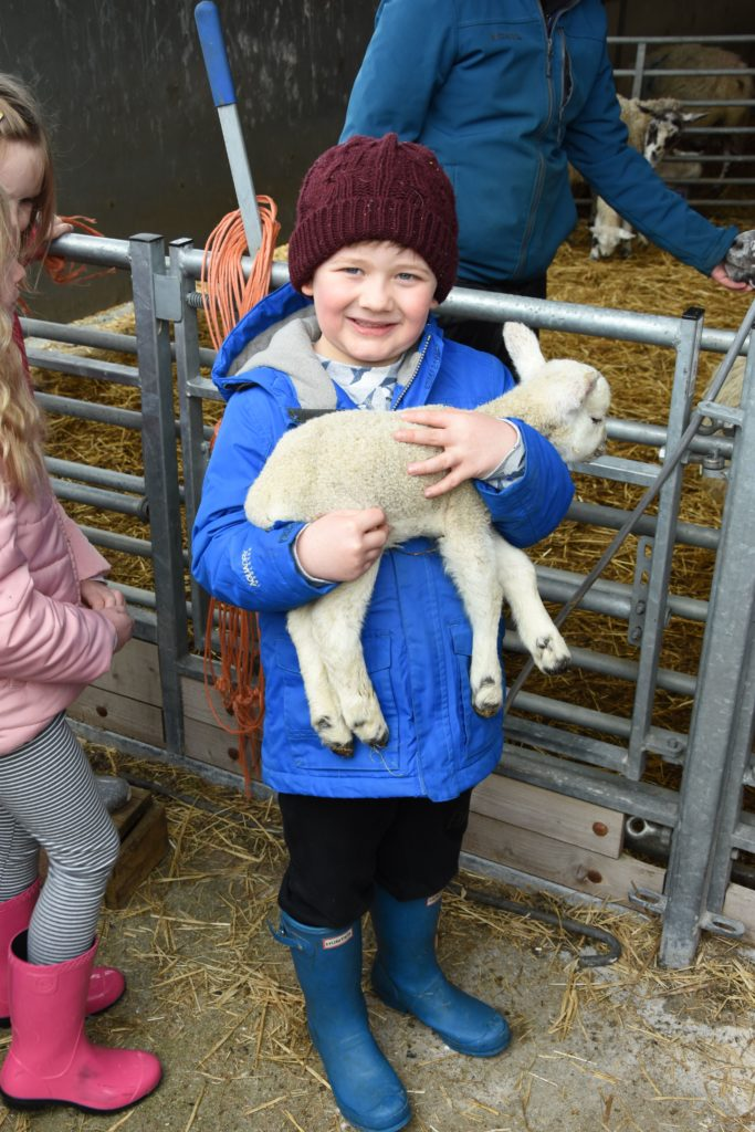 Euan Fleming gets his chance to handle a lamb after waiting patiently for his turn.