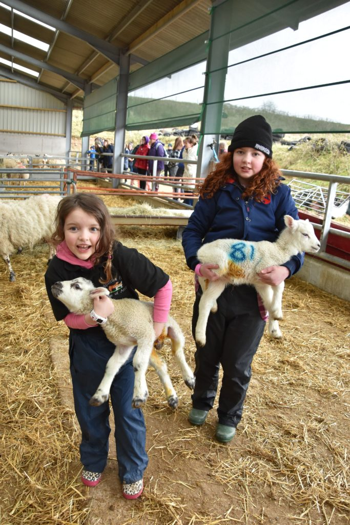 Cara Henderson manages to hold a wriggling lamb while her sister Emma shows visitors a more compliant baby.