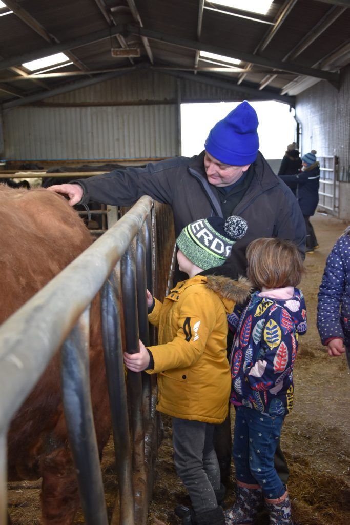 David Henderson encourages young children to touch a docile cow.
