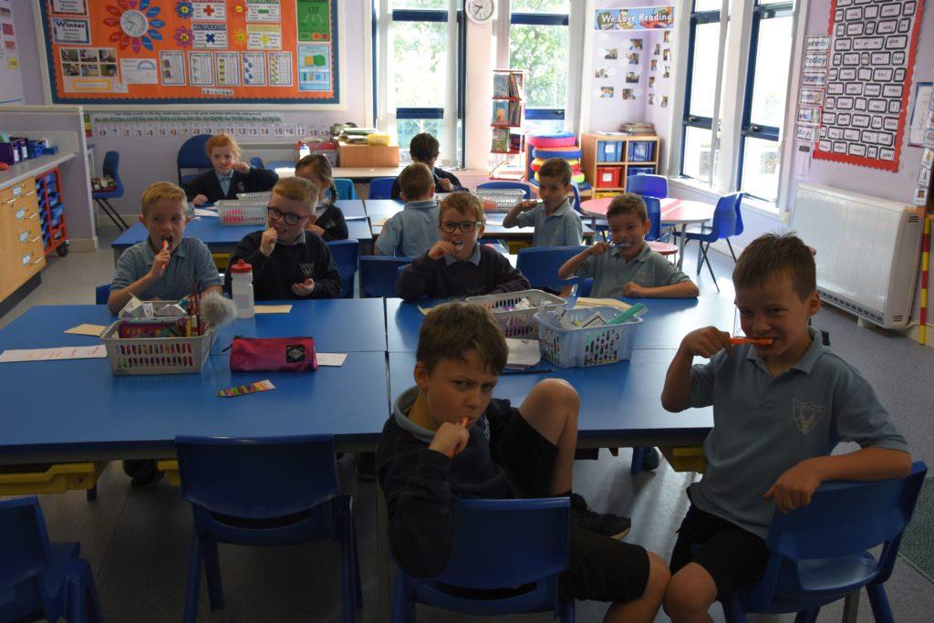 Brodick Primary P3 pupils.