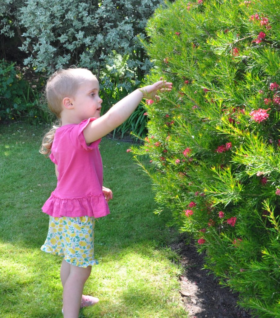 Little Maisie Picken admires the flowers.