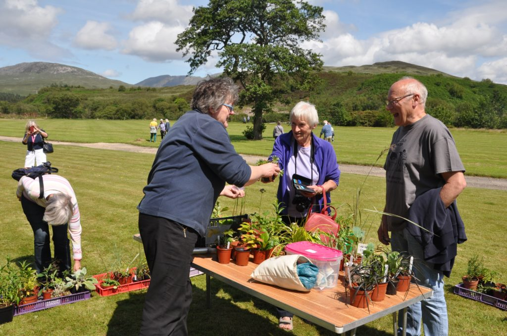 A busy day at the plant stall.