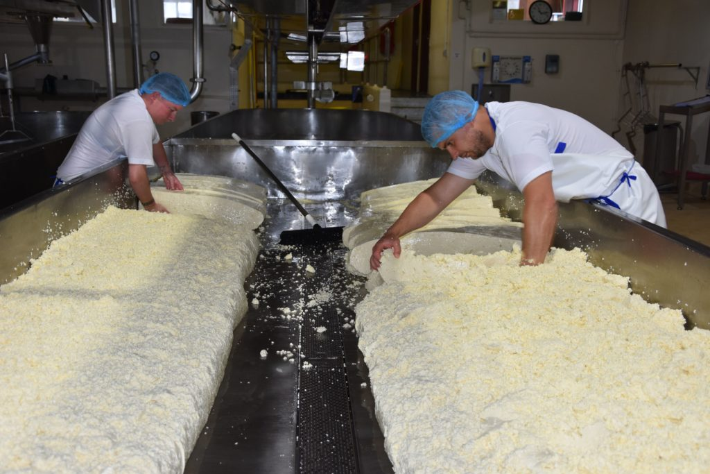 Lisa Edwards and Stewart Kilpatrick cut the last Torrylinn cheese, ever to be produced at the creamery, into slabs.