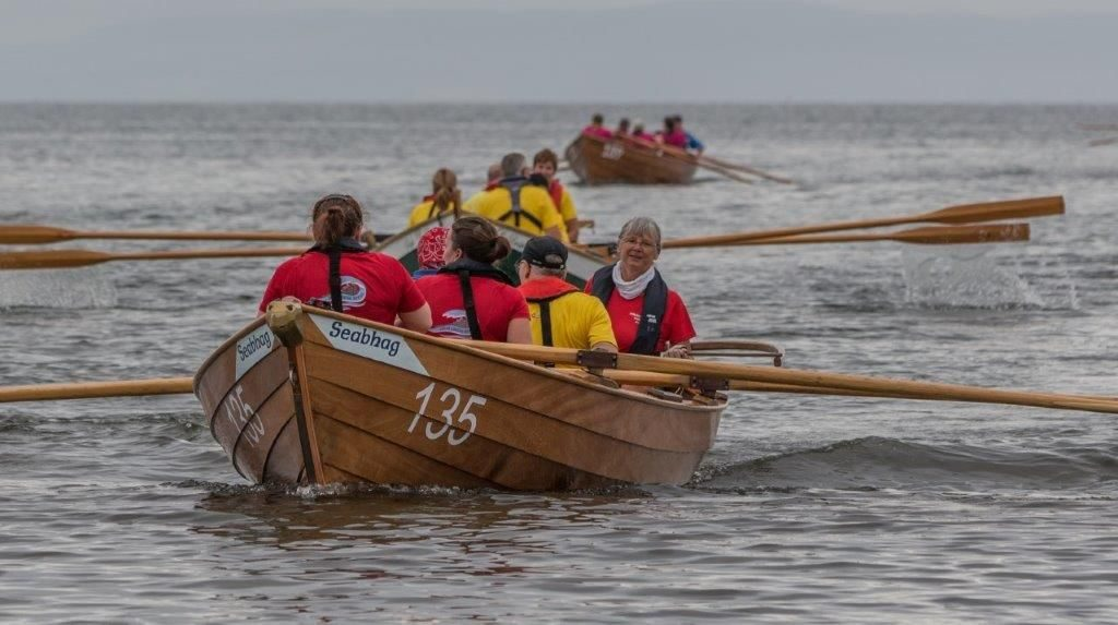 Arran's novices return from their gold medal win.