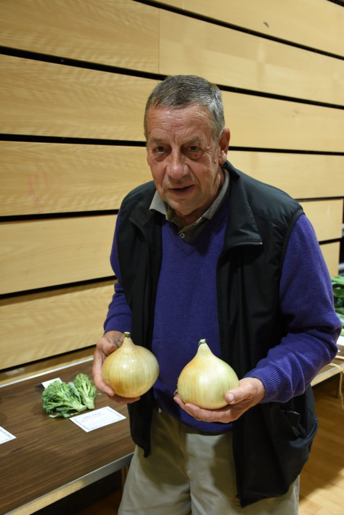 John O'Sullivan with an impressive display of  his large onions that won the Eric Gregory Cup for the best exhibit of onion in show.