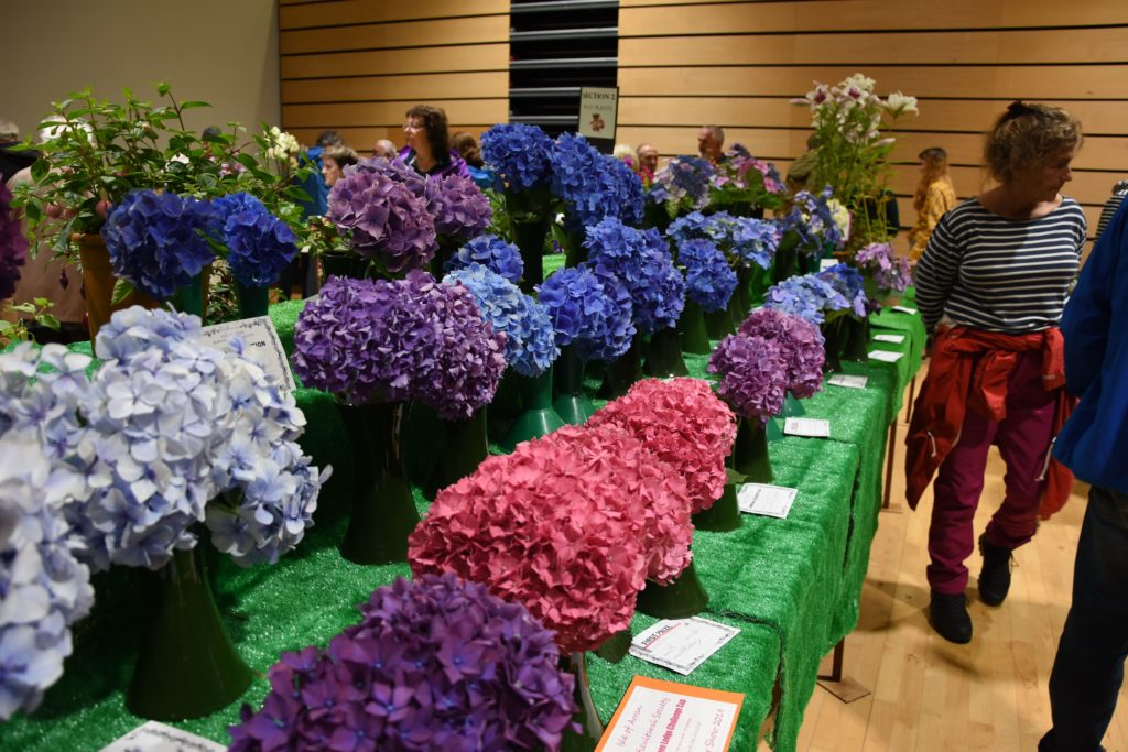 The flower section presents a vivid and fragrant display.