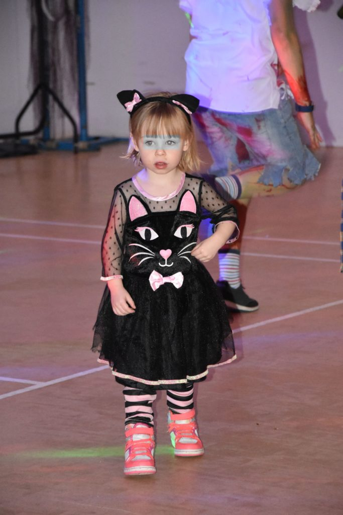 A cute kitten shows of her moves on the Lochranza dance floor.