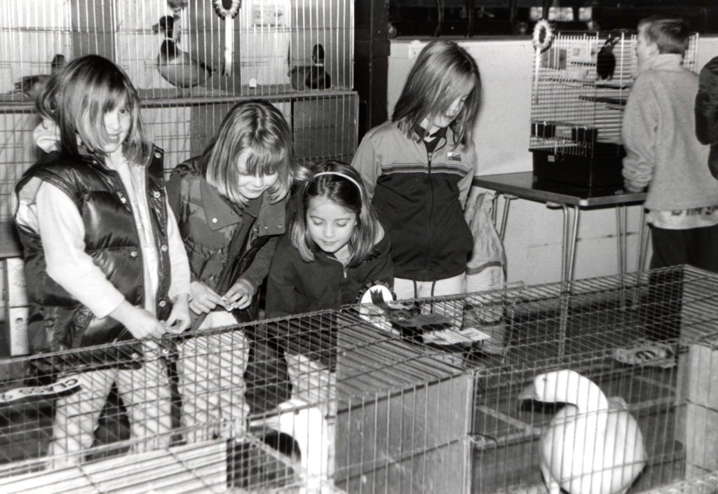 Saying boo to a goose at the Chookie Show are Lois Griffin, Hannah Dobson, Laura Bone and Ainsley Bone.