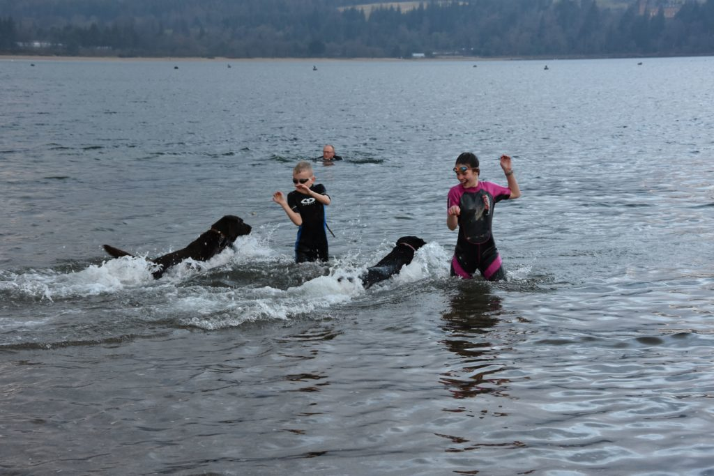 Two young dookers are joined by their boisterous dogs.