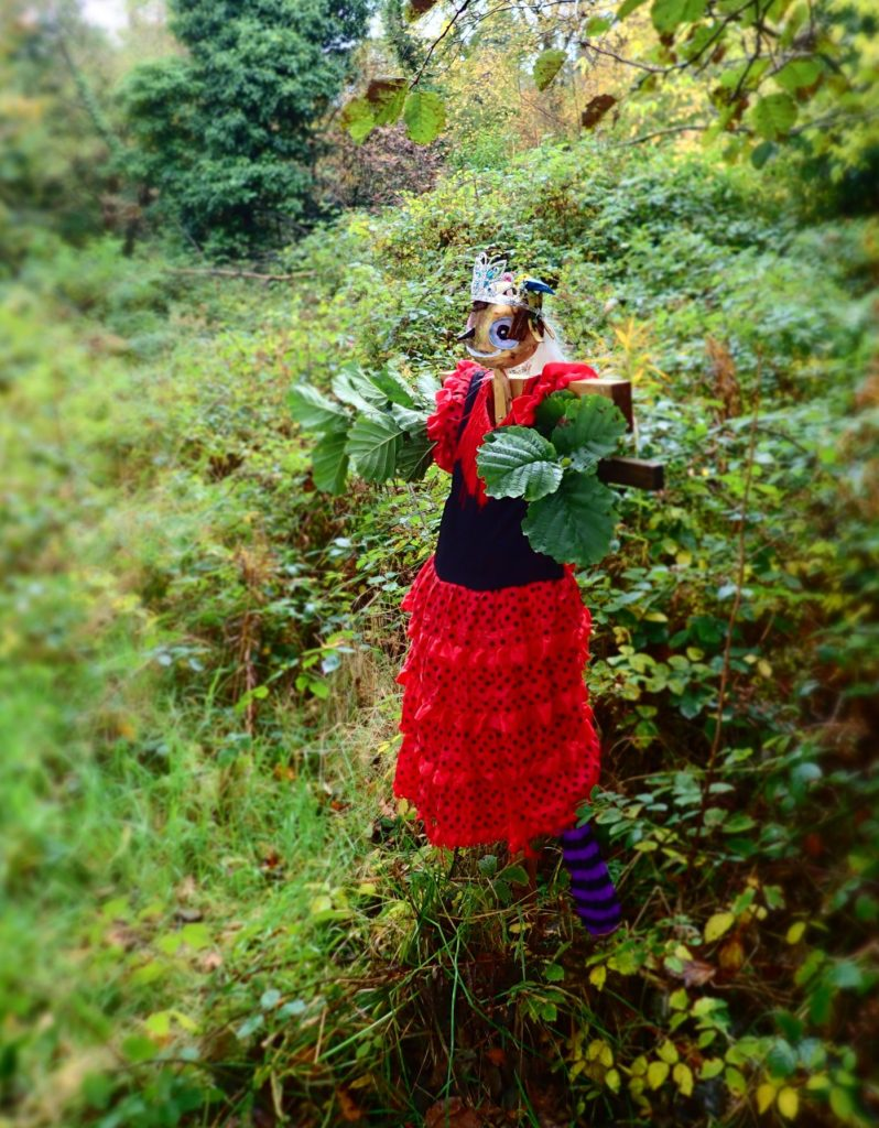 A pixie-sized Spanish Lady on the bogle trail.
