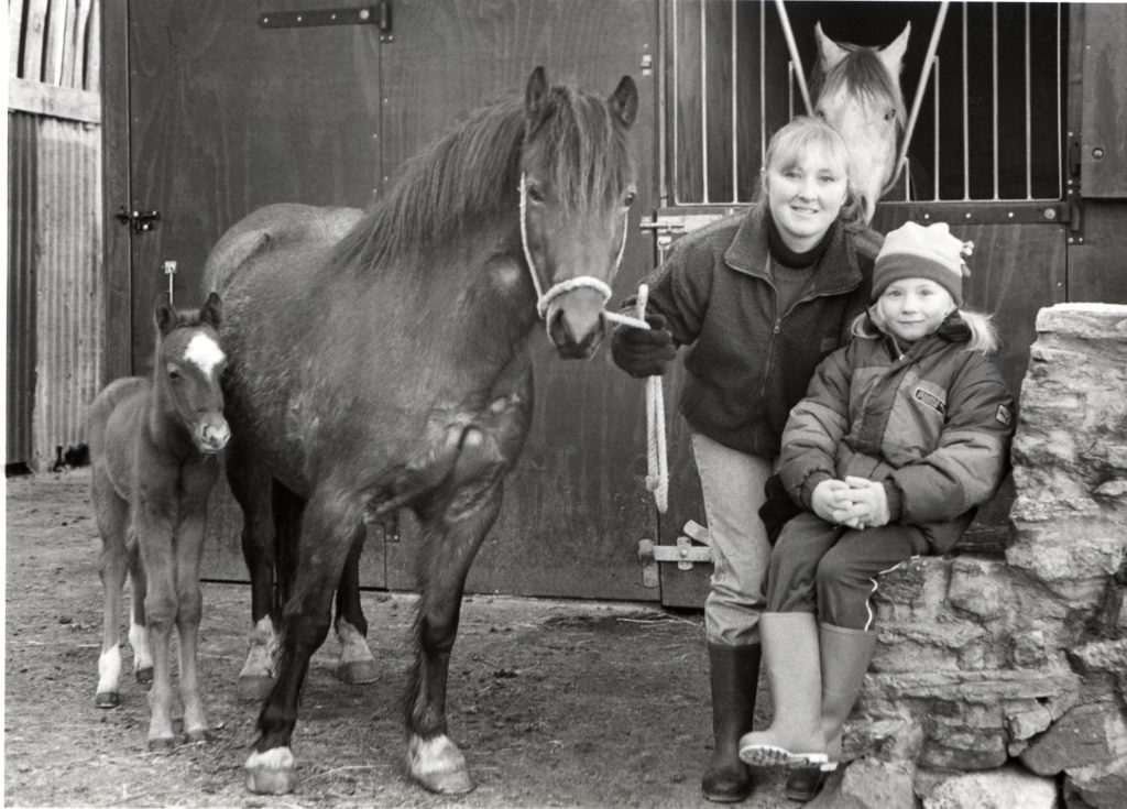 Donna Hemmings of Blairvoyach, West Bennan, and her eight-year-old daughter Jennifer show off their new foal Jasper, who was born three days before Christmas. Also in the picture is Jasper's sire, Arab stallion Jakhiri, and dam Tootsie, a six-year-old Welsh pony.
