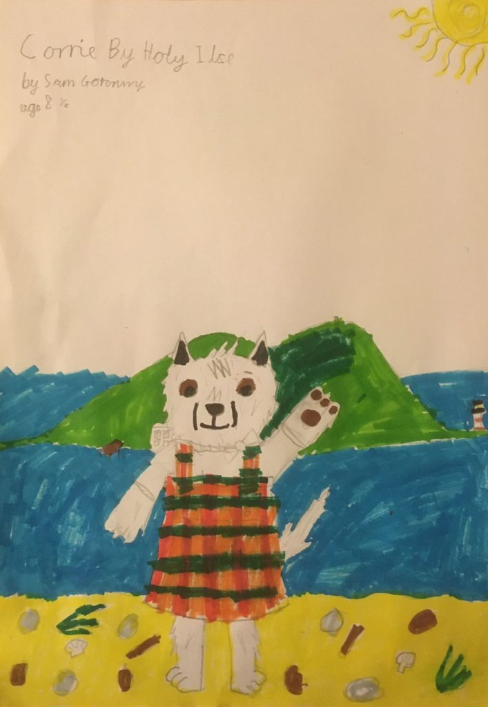 Another commended entry was this picture of Corrie overlooking Holy Isle by Sam Goronwy, eight, from Corden.