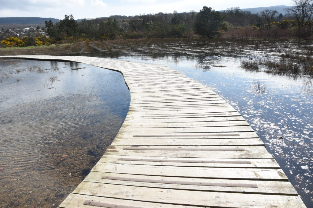 The water reaches the boardwalk at high tide.
