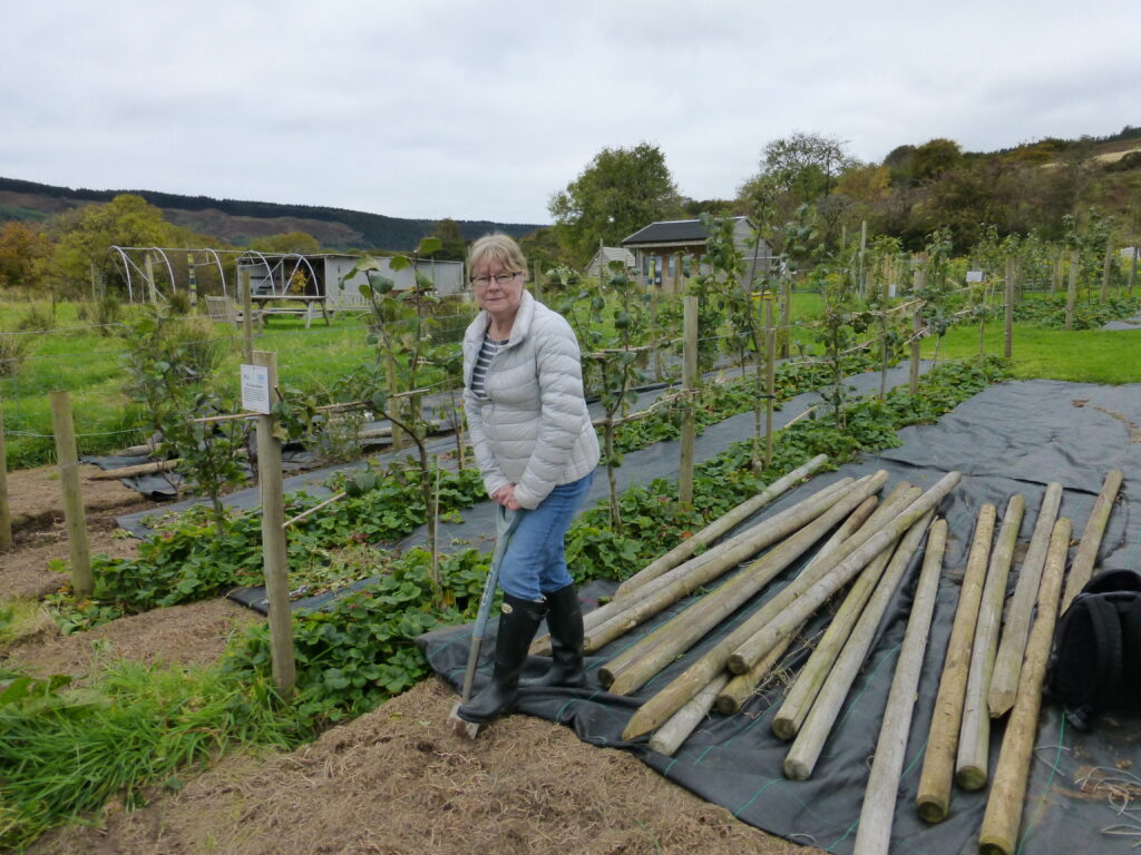 Lynn at the Arran Community Land Initiative where she grows ingredients for her dyes.