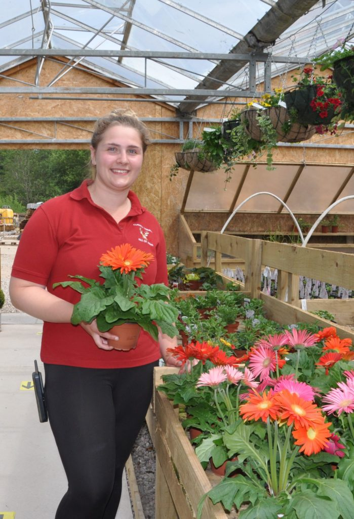 Gardeners world at Cladach