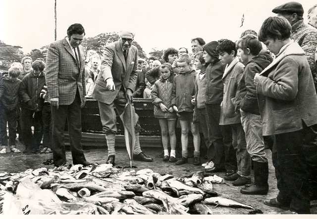 Fish and shellfish in Arran's waters – 'a fishy business'