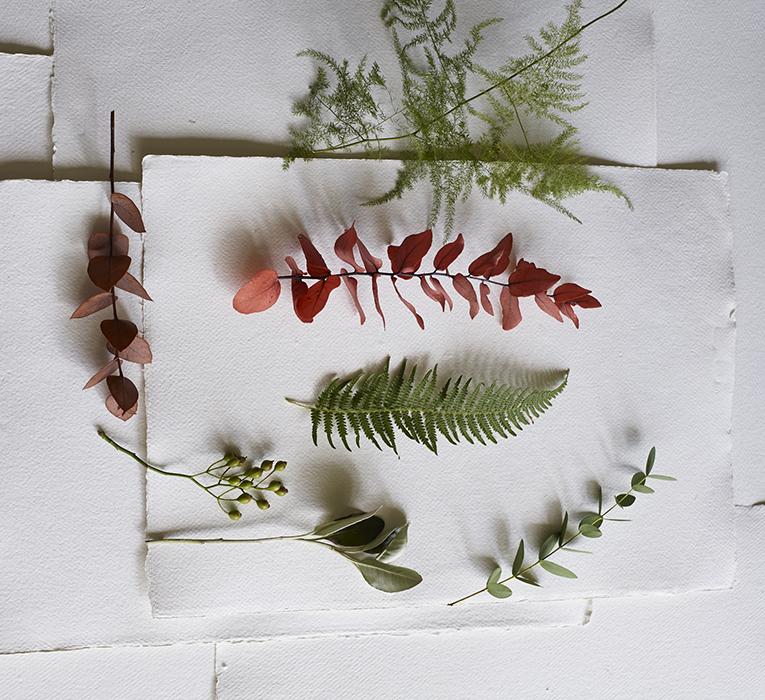 A selection of foliage