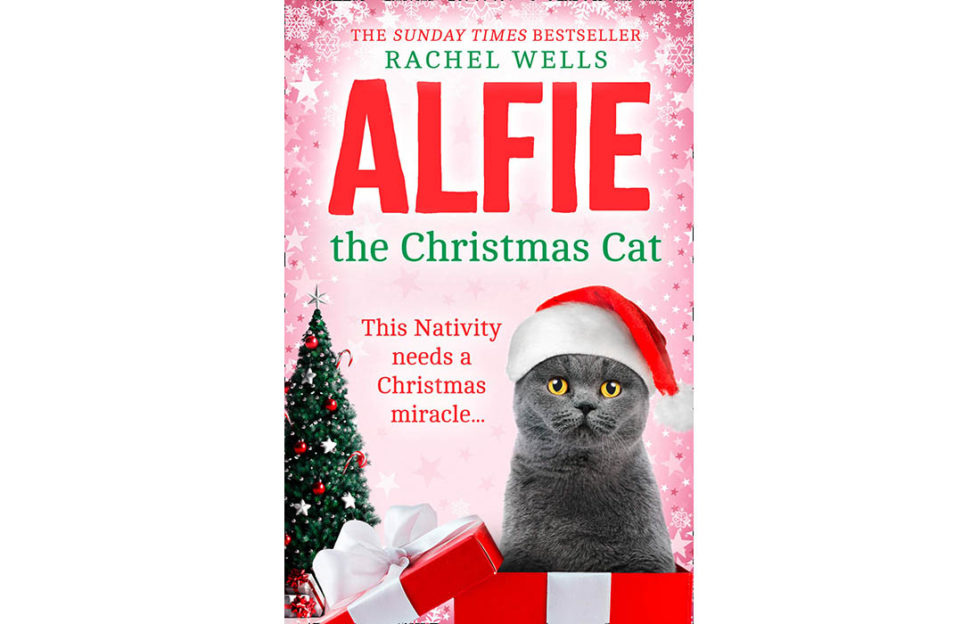 Alfie the Christmas Cat book cover