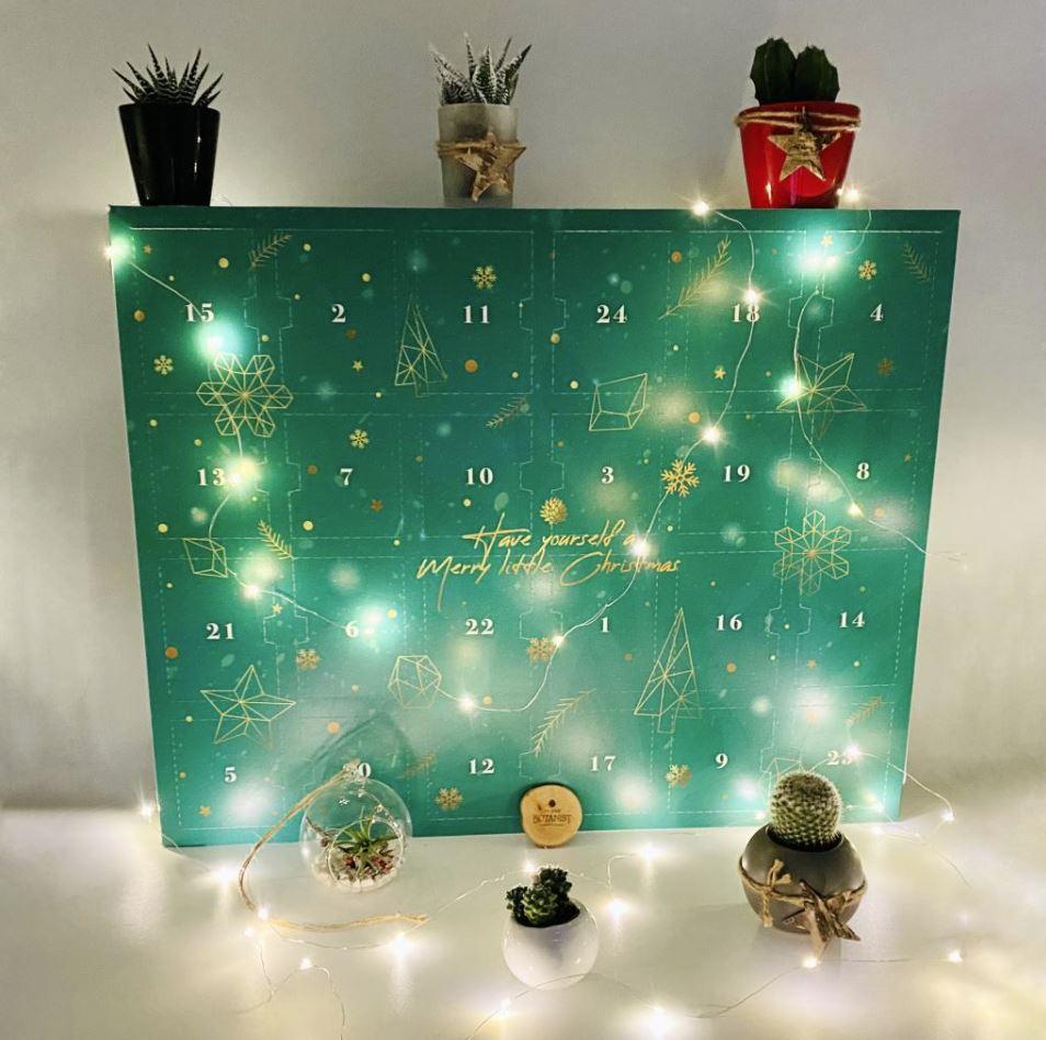 Urban Botanist advent calendar