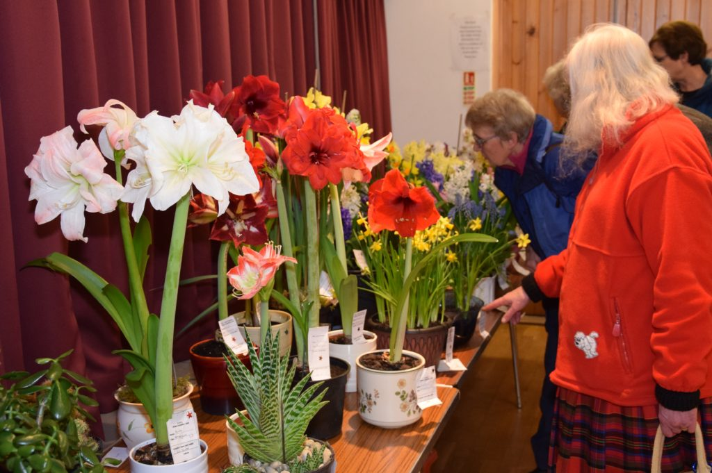 The aroma omitted from the colourful floral entries filled the hall.