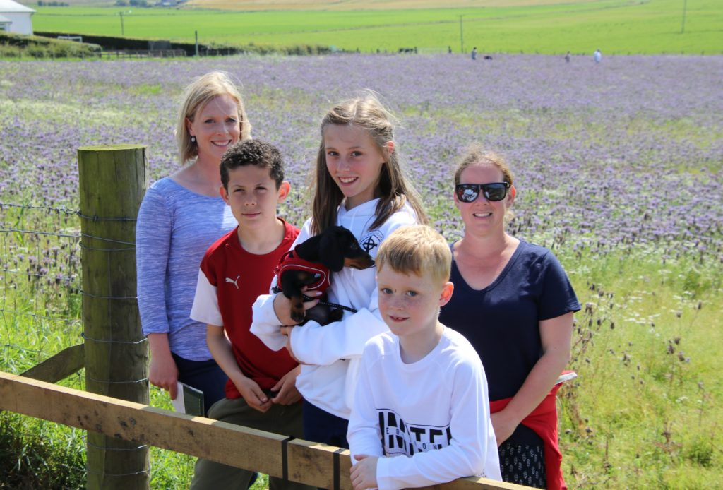 From left: Andrea McShannon, Taylor Purser, Isla McShannon holding Cleo the dog, Alexander McShannon and Kerry Hopes in front of the purple phacelia.