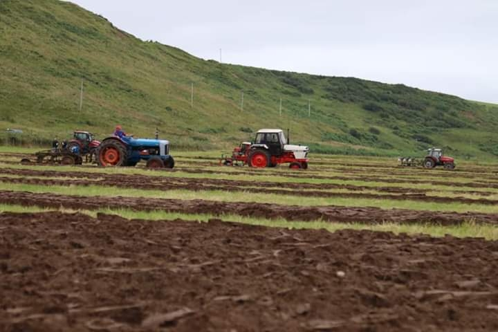The tractors in competition. Photograph: Will Anderson