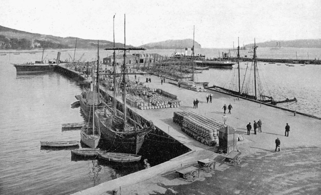 Campbeltown's Old Quay was still a busy place in the early 1920s, with a mixture of steam and sailing ships. Around 30 or 40 fishing skiffs can be seen on the right, with a schooner in front of them. The barrels would have been full of salted herring for markets in Glasgow and elsewhere.  Photograph: Stenlake Publishing.