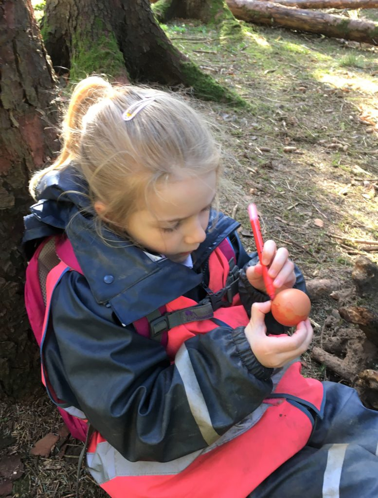 The children took coloured pens to the forest, where they decorated their eggs.