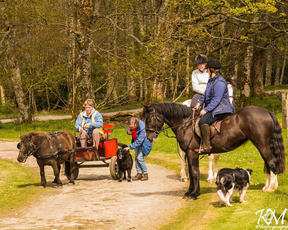 Pony riders saddle up for charity