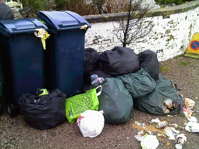Fly tipping on quay causes stink