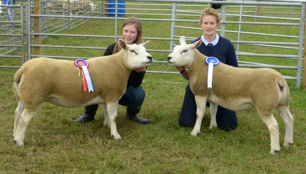 Kintyre Agricultural Show 2018 results – sheep