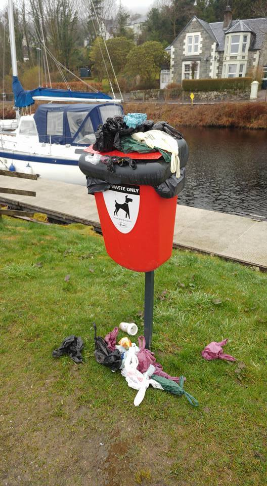 Letter: Dog mess despoils Quarry Green