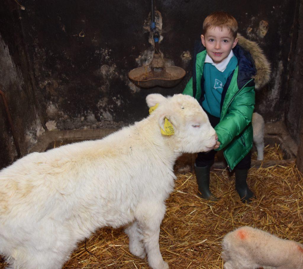 New life at the farm