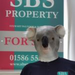 The aim of the SBS fundraiser is to kelp koalas and other injured Australian wildlife.