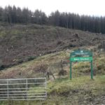 Felling at Beinn Ghuilean started in January.