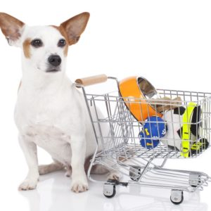VETS, PETS AND ANIMAL SUPPLIES