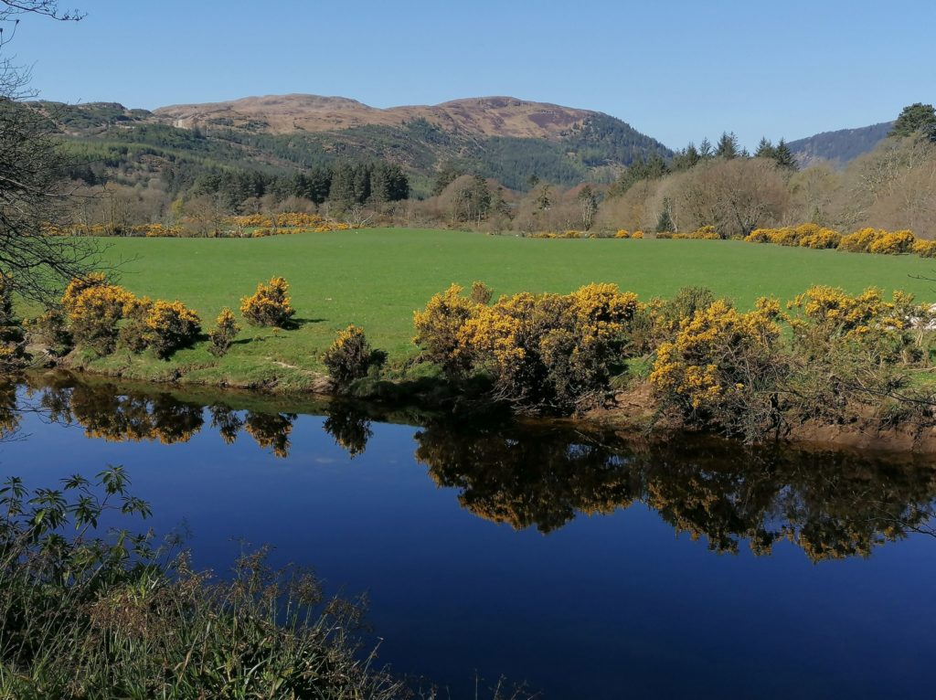 This week's photograph, taken by Debra Clarke , is of the river at Waterfoot in East Kintyre on a beautiful day in April.